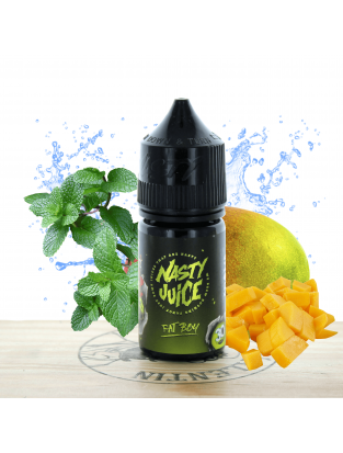 Concentré Fat Boy 30ml - Nasty Juice