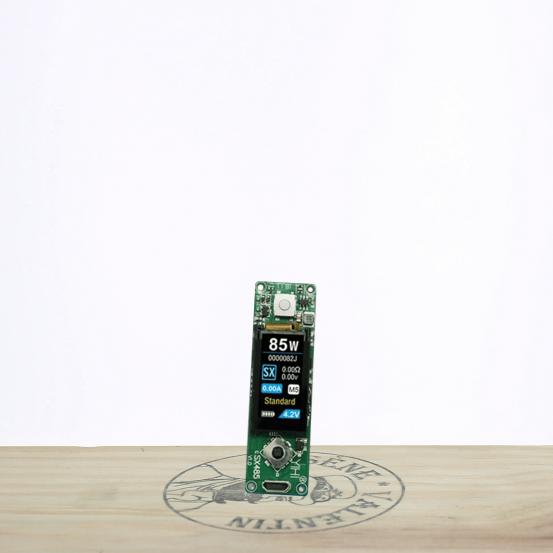 Chipset SX485J (100W) - SX MINI